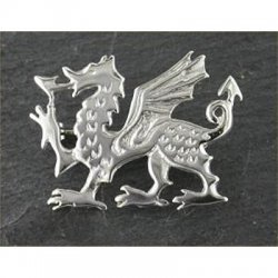 large-welsh-dragon-brooch-silver-58a-celtic-jewellery-012b-silver-generic-250x250
