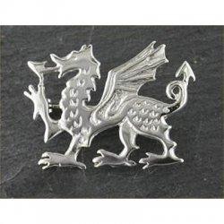 large-welsh-dragon-brooch-silver-58a-celtic-jewellery-012b-silver-generic-250x250